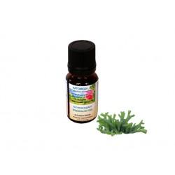 Антиоксидант за лице с водарасли + растителен Q10