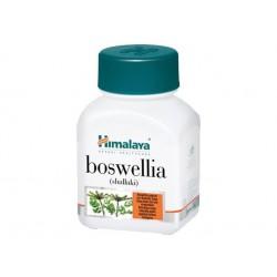 Boswellia - Joint Health, Himalaya - 60 capsules