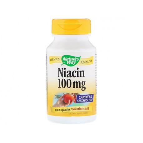 Niacin (vitamin B3), Nature's Way, 100 capsules
