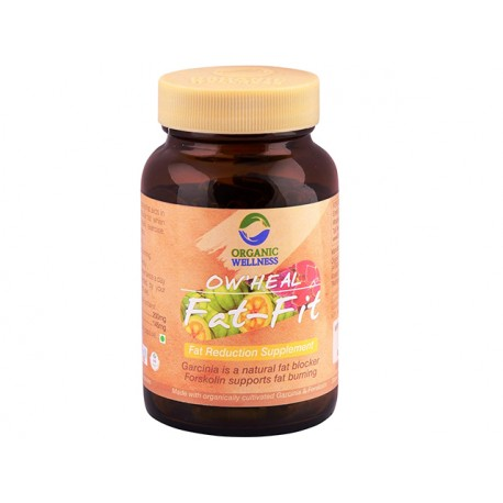 Fat-Fit, Organic Wellness, 90 capsules