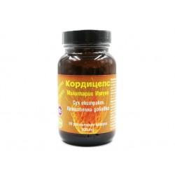 Cordyceps Militaris Immuno, dry extract, 90 capsules