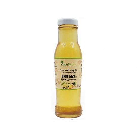 Elderberry flower and ginger, concentrate syrup, Zdravnitza, 285 ml